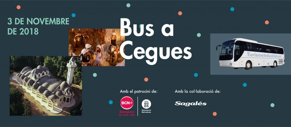 Bus a cegues