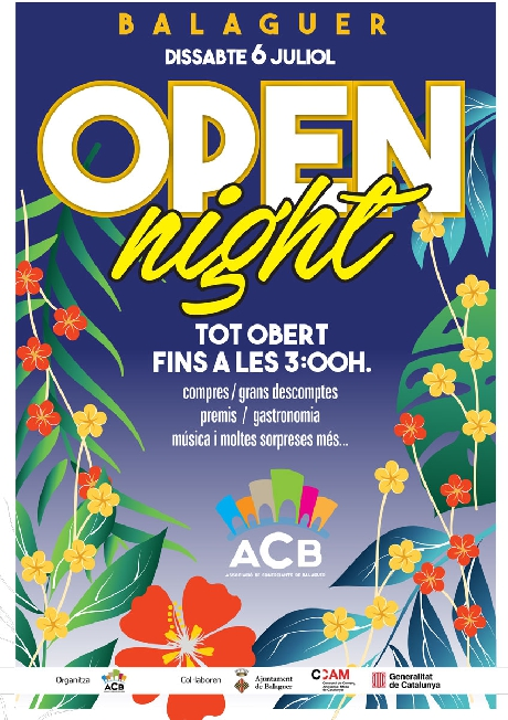 Cartell de l'Open Night.